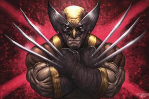 Wolverine X Men