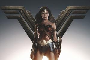 Wonder Woman4kartwork
