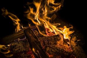 Wood Flame Burning 4k