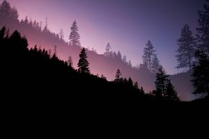 Yosemite Valley Evening 5k Wallpaper