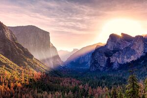 Yosemite Valley Morning