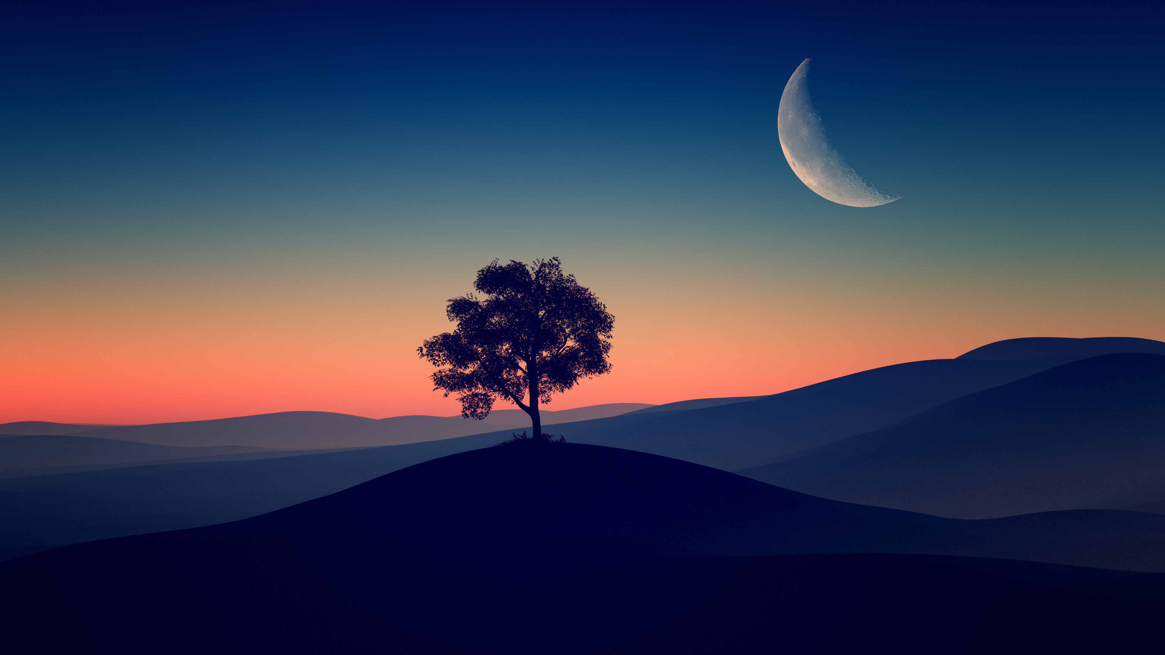 Tree Alone Dark Evening 4k Hd Nature 4k Wallpapers Images Backgrounds Photos And Pictures