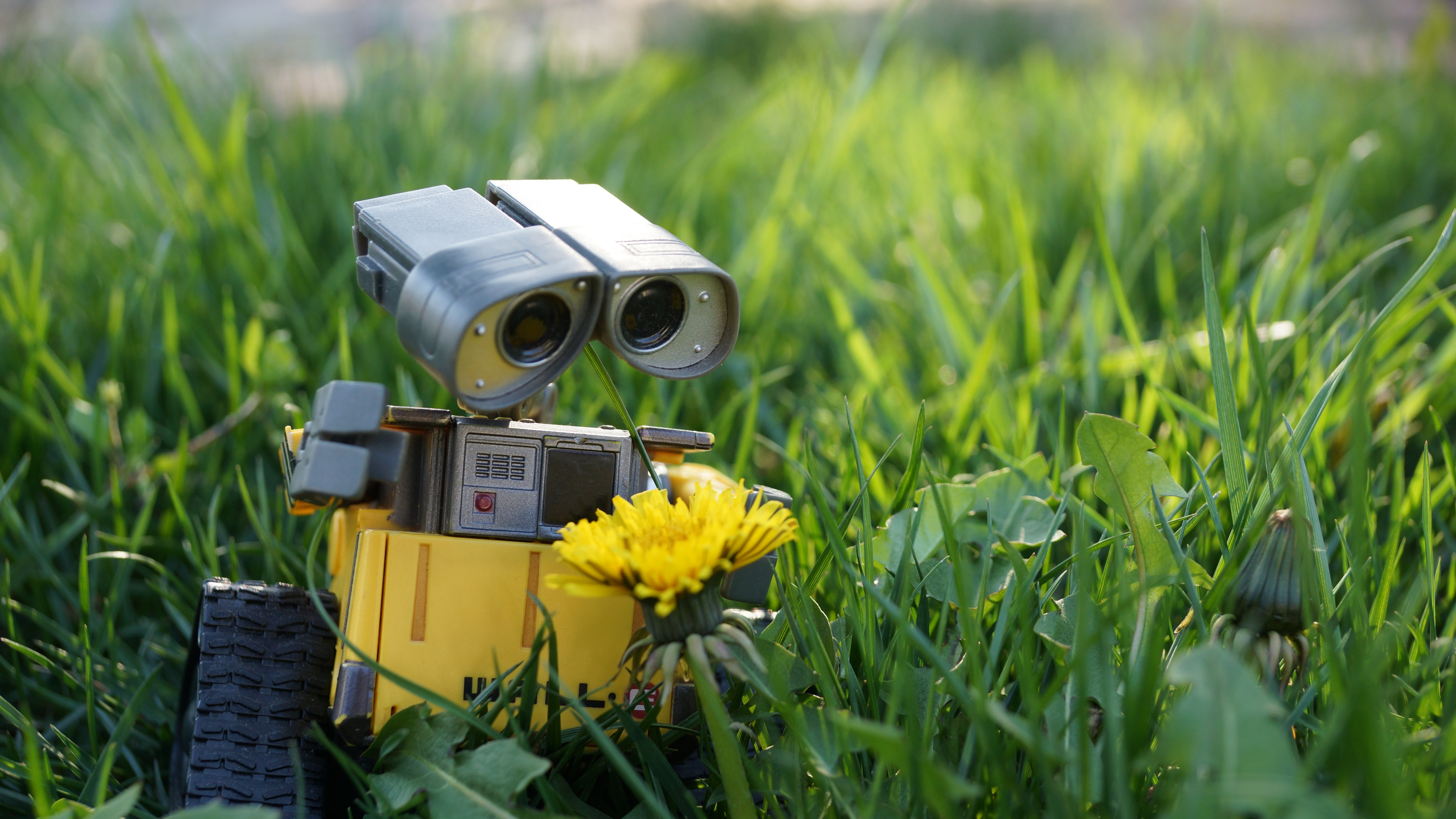 3840x2400 Wall E Robot 4k HD 4k Wallpapers, Images ...