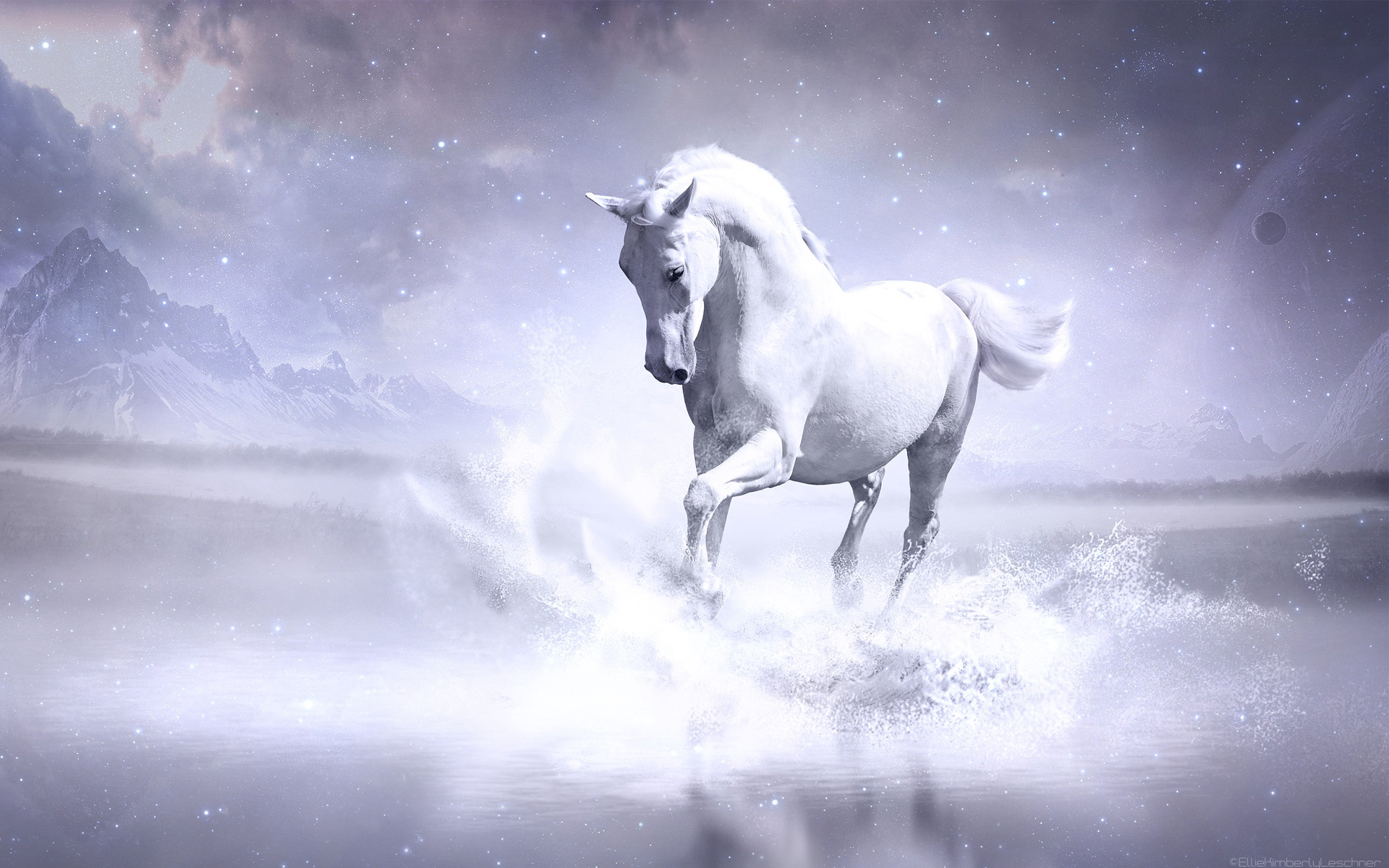 1360x768 White Horse Laptop Hd Hd 4k Wallpapers Images Backgrounds Photos And Pictures