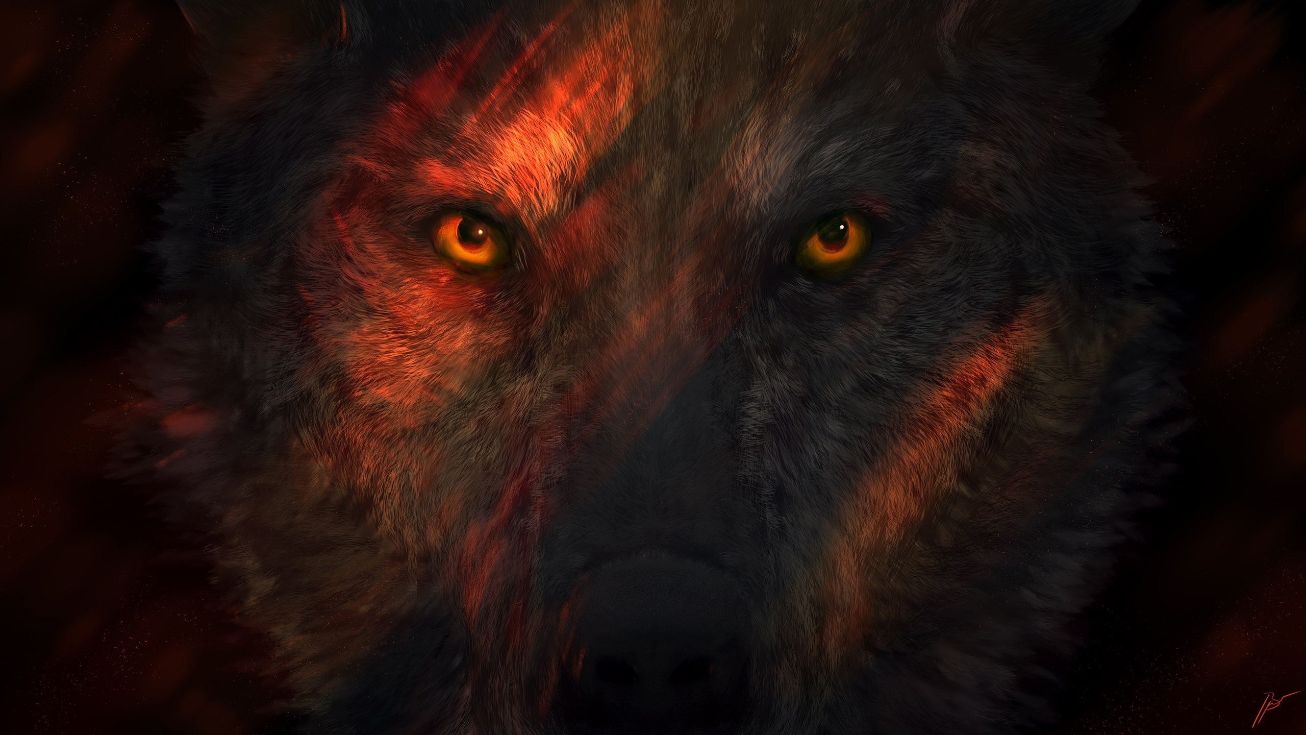320x240 Wild Wolf Eyes Apple Iphone Ipod Touch Galaxy Ace Hd 4k Wallpapers Images Backgrounds Photos And Pictures