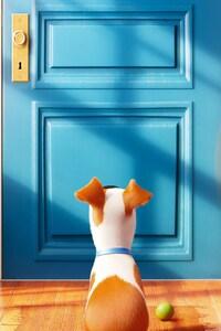 2016 The Secrete Life of Pets