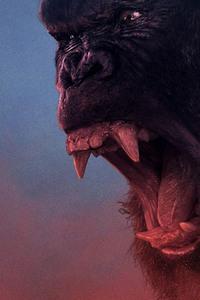 240x320 2017 Kong Skull Island Hail The King