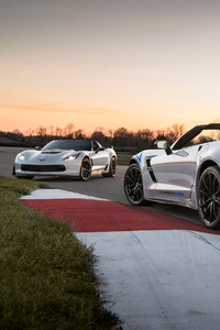 2018 Chevrole Corvette Carbon 65 Edition Models