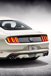 720x1280 2018 Ford Mustang GT 50 Years Edition Rear