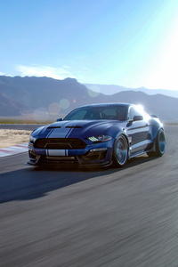 2019 Ford Mustang Shelby GT350 4k