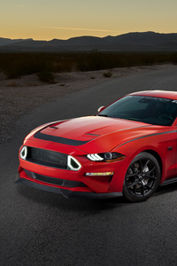 720x1280 2019 Ford Series 1 Mustang RTR