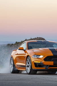 1125x2436 2019 Shelby GT S