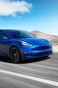 1080x2280 2019 Tesla Model Y