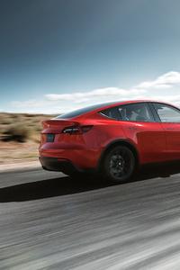 1080x2280 2019 Tesla Model Y Rear