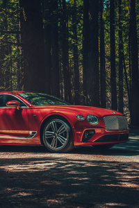 1242x2688 2020 Bentley Continental GT V8 4k