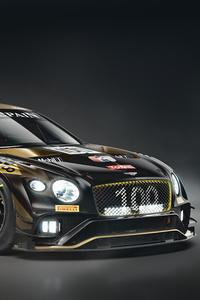 2020 Bentley Continentals GT3 Front View 8k