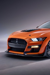 2020 Ford Mustang Shelby GT500 5k