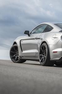 750x1334 2020 Mustang Shelby GT350R Rear