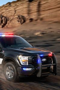 1280x2120 2021 Ford F 150 Police Responder 2021