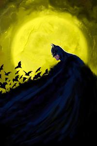 4k Batman Cape Bats
