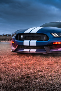 480x800 4k Ford Mustang Shelby Gt500