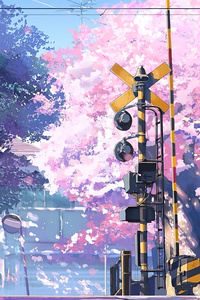 1280x2120 5 Centimeters Per Second Anime Tv Series 4k