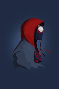 5 Spiderman Minimalism