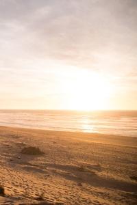 240x320 5k Beach Ocean Dunes