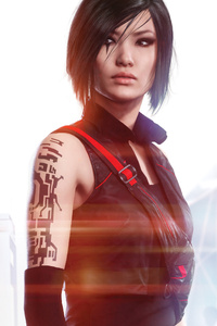 1242x2688 5k Mirrors Edge Catalyst
