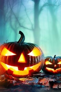 8k Halloween