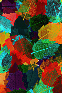 1440x2960 Abstract Autumn Leaves 4k