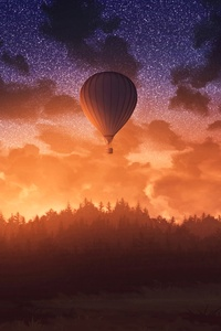 1125x2436 Air Balloons Sunrise Sky Forest 4k