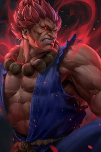 Akuma Street Fighter 4k Artwork