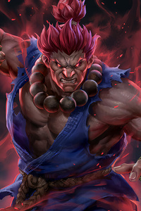 Akuma Street Fighter Artwork