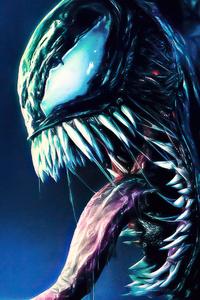 1242x2688 Alien Vs Venom