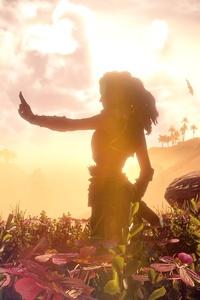 Aloy Horizon Zero Dawn VideoGame
