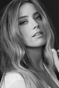 640x960 Amber Heard 2020 Monochrome 4k