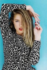 Amber Heard Hollywood