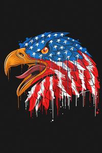 640x1136 American Flag Eagle Minimal 4k