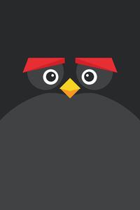 1080x2160 Angry Bird Minimal Dark 8k