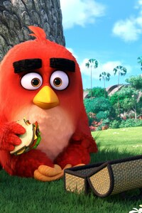 Angry Birds Main Character