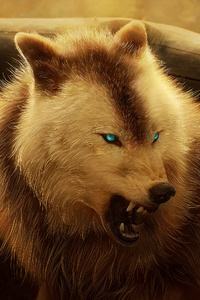 320x480 Angry Wolf 4k