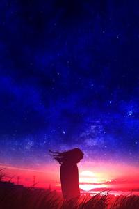 Anime Girl In Field Silhouette Sunset