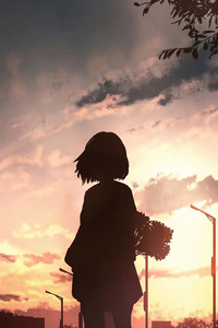 1080x2160 Anime Girl With Flowers Looking Towards Sunset