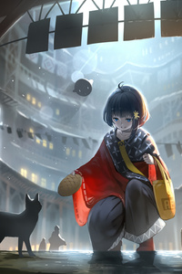 Anime Original Blue Eyes Short Hair Girls With Cat