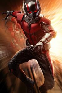 1080x1920 Ant Man 2020