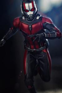 2160x3840 Ant Man 4k 2020
