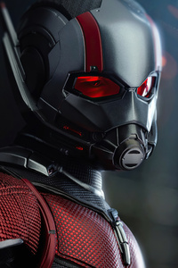 2160x3840 Ant Man 4k