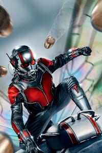 240x400 Ant Man 5k