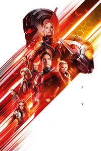 1242x2688 Ant Man And The Wasp 12k
